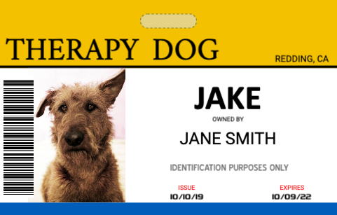 Service Dog Id Card Template from www.easyidcard.com